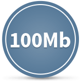 Business Fibre 100