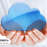 Magnet Voice is a cloud phone system with offers businesses a cheaper phone bill.