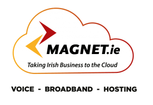 Taking Irish Business to the Cloud